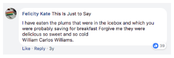 A comment left by a consumer on Grammarly's Facebook page